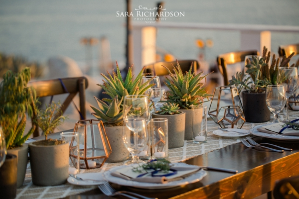 sunset-da-mona-lisa-intimate-cabo-wedding-momentos-los-cabos_0028