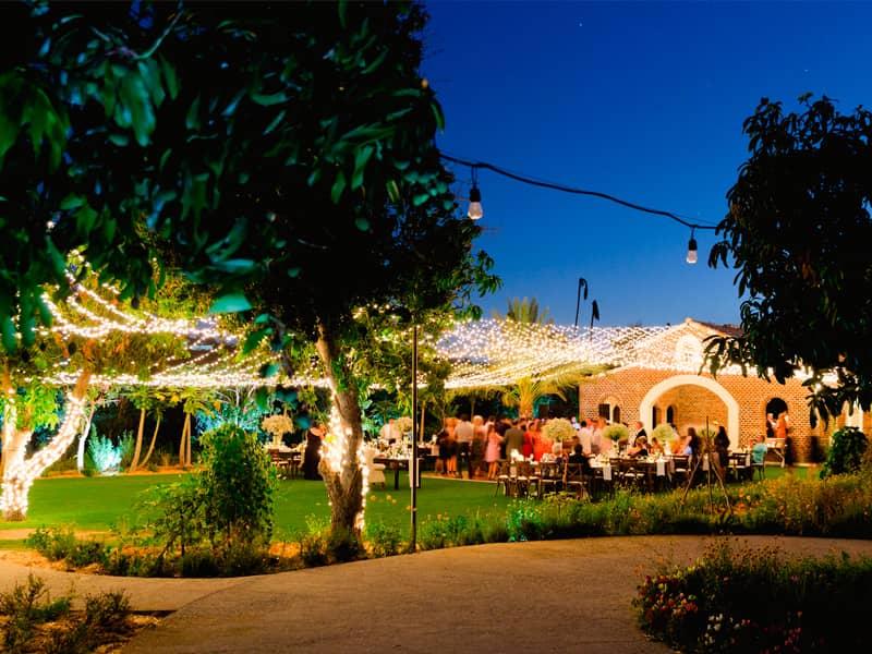 Cabo Wedding Venues: Flora Farms
