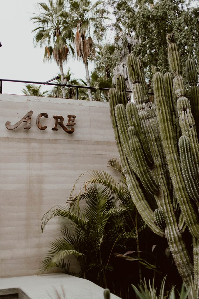 Maggie and Chase Edgy Wedding in Acre Baja