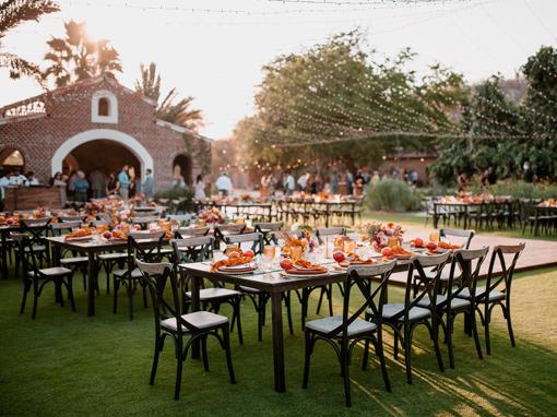 Flora Farms Los Cabos Wedding Venue